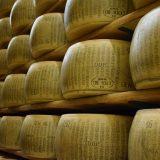 Il Parmigiano Reggiano fa bene all'intestino