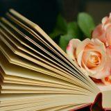 Librinvetrina, nella Bassa la cultura illumina i negozi