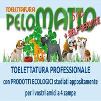 Foto del profilo di Pelomatto